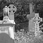 B&W Graves by funkybunch