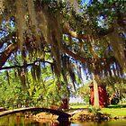 Lagoon Walking Bridge by Wanda Raines