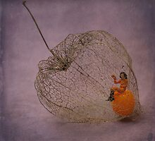 Physalis - Amour en cage by Dongedy