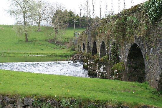 Cork Bridge by Dennis Brown