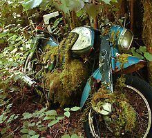 Bmw Motorcyle of the Woods by Brandon Taylor
