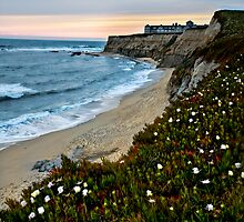 Half Moon Bay by Portia Soderberg