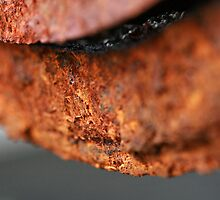 A Thin Line of Rusty Focus by Coreycw