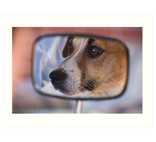 How much is that doggy in the Mirror Art Print