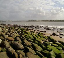 Rocky Shores by reflector
