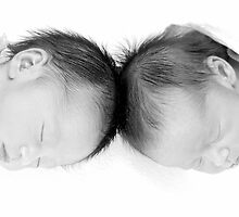 More Twins by Alexander Gitlits