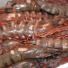 Dublin King Prawns  by pablotguerrero