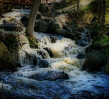 McGillivray Falls by Vickie Emms
