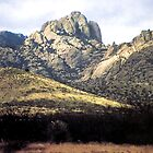 Chiricahua National Park Monument - Arizona by Ann Warrenton