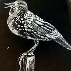 Meadowlark 2 by Kendra Taber