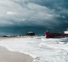 Pasha Bulker Panoramic by Steven Vogel