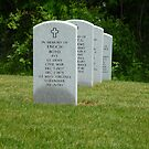 Civil War Grave-Western Reserve National Cemetery-Ohio by Bea Godbee