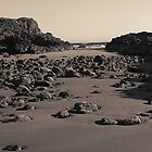 LOW TIDE #2 by dgcheney