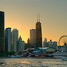 Chicago Skyline by Len Langevin