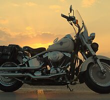 Harley Davidson Sunset by David Brooks