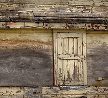 Old Elevator Door by Kerri Gallagher