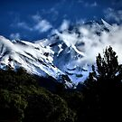 Mt Taranaki From Dawson's Falls by Mike Rowley