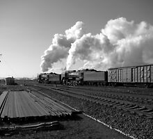 Freight train by Paul Holland