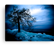Retreating Ice Canvas Print