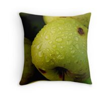 apples on the ground Throw Pillow