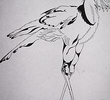 Secretary bird by Kestrelle
