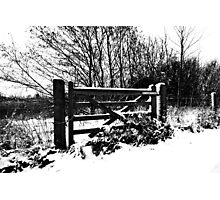 Gate in the Park Photographic Print