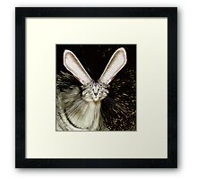 Look What Happened to Me... Framed Print