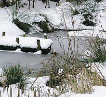 Winters Tale by dawnpeace