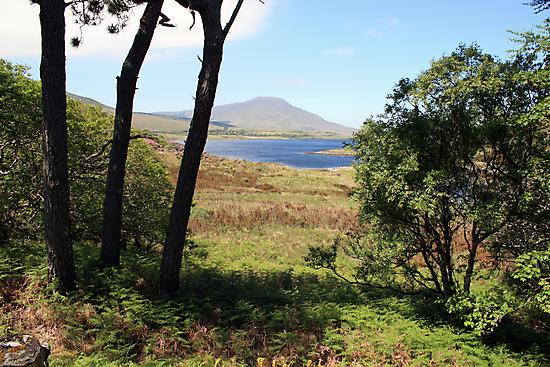 Mayo countryside by John Quinn