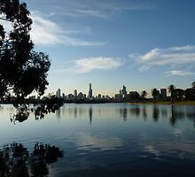 Albert Park Reflection by solena432