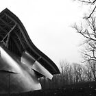 Shine on Gehry, Bard College, New York State by Jane McDougall