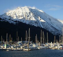Seward Alaska by Christopher  Boswell