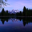 Purple Calm - Pre-Dawn View of the Tetons by Stephen Beattie