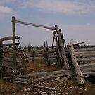 An old fence.... had it's day.. by Larry Llewellyn