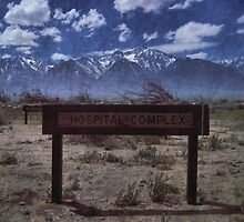 Manzanar Today by Priscilla Rodriguez