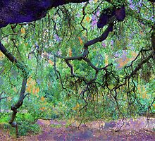 Abstracted Tree With Fauvist Touches by Ivana Redwine