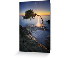 Coexistence Greeting Card