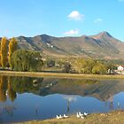 Lake Clarens, South Africa by stevedunkley