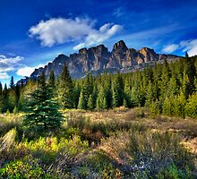 Castle Mountain by dsphotography