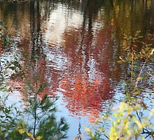 Autumn leaves reflected in water by Carolyn  Reinhart