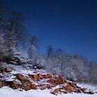 Moonlite Snow by Kevin  McIntyre