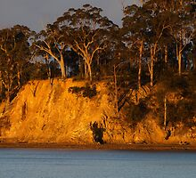 Afternoon sun on rock face, Batehaven NSW by Tom McDonnell