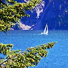 Buttonhook Bay Sailboat by Tamara Valjean
