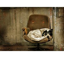 the Broken Chair Photographic Print