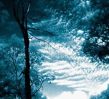 blue day.... dreaming a little dream of death in the midst of life by Juilee  Pryor