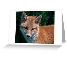 Luna Portait (Red Fox) Greeting Card