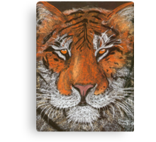 Night Tiger Canvas Print