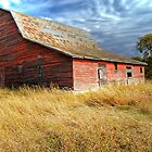 Alone in the Prairie by paolo1955