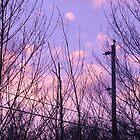 Beautiful Sky by Blue Skye Art  & Photography