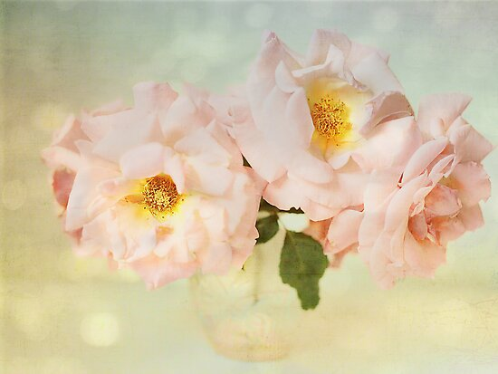 Pretty Pink Antique Roses by Susan Gary